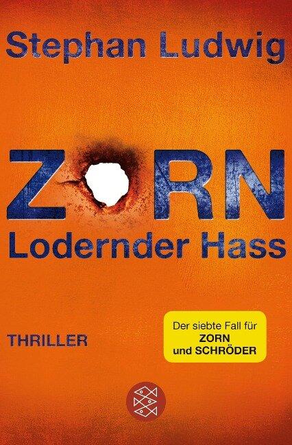 Zorn - Lodernder Hass - Stephan Ludwig