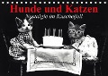 Hunde und Katzen - Nostalgie im Kuschelfell (Tischkalender 2018 DIN A5 quer) - Elisabeth Stanzer
