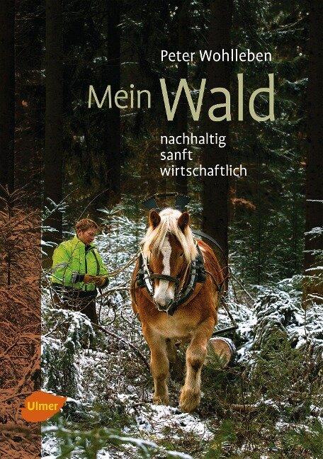 Mein Wald - Peter Wohlleben