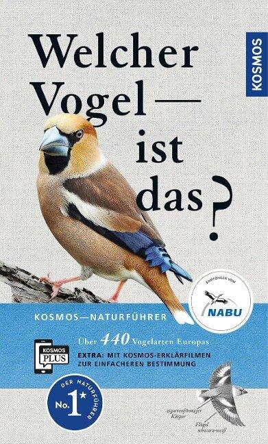 Welcher Vogel ist das? - Volker Dierschke