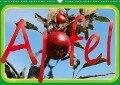 Apfel (Wandkalender 2018 DIN A3 quer) - k. A. tinadefortunata