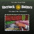 Sherlock Holmes - Die alten Fälle (Reloaded), Fall 6: Das Tal der Furcht - Sir Arthur Conan Doyle, Sebastian Pobot