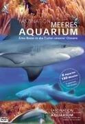 Faszination Meeres Aquarium - Aquarium