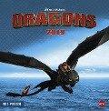 Dragons Broschurkalender - Kalender 2019 -