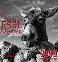 Der (un)literarische Eselkalender 2019. Postkartenkalender - Wolfram Burckhardt