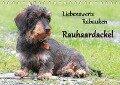 Liebenswerte Rabauken Rauhaardackel / CH-Version (Tischkalender 2017 DIN A5 quer) - Barbara Mielewczyk