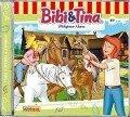 Bibi und Tina 89. Wildgänse-Alarm -