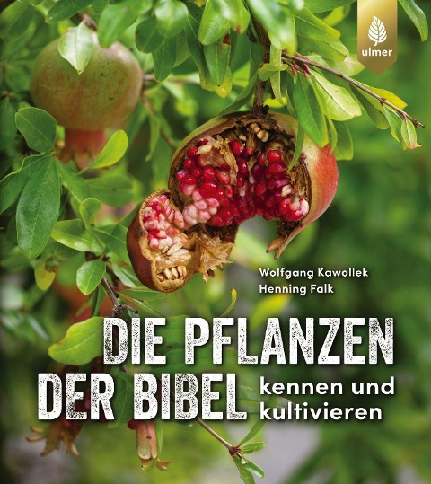 Die Pflanzen der Bibel - Wolfgang Kawollek, Henning Falk