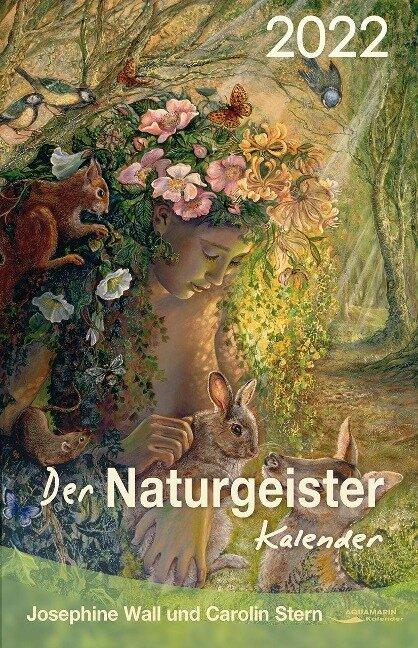 Der Naturgeister-Kalender 2022 - Carolin Stern