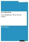 Steven Soderbergh - Postmodern Art Cinema - Simon Albert Keller