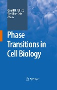Phase Transitions in Cell Biology -