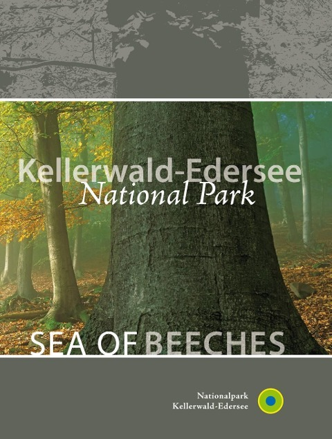 Kellerwald-Edersee National Park Sea of beeches