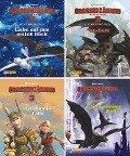 Nelson Mini-Bücher: 4er Drachenzähmen leicht gemacht 3 1-4 -