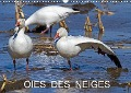 OIES DES NEIGES (Calendrier mural 2017 DIN A3 horizontal) - Philippe Henry