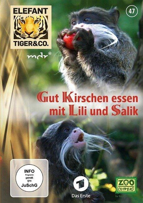 Elefant, Tiger & Co. 47 Gut Kirschen essen mit Lili und Salik -