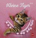 Katzen. Kleine Tiger 2019. Postkartenkalender -