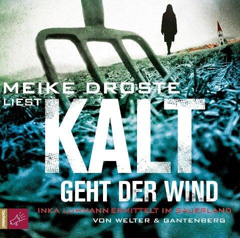 Kalt geht der Wind (Hörbestseller) - Welter/Gantenberg