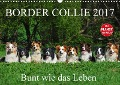 Border Collie 2017 (Wandkalender 2017 DIN A3 quer) - Sigrid Starick