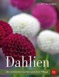 Dahlien - Bettina Verbeek