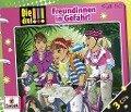 Die drei !!! 50: Freundinnen in Gefahr (3 Audio-CDs) - Maja von Vogel, Henriette Wich, Mira Sol, Ina Biber