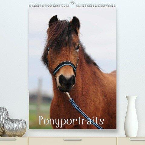 Wandkalender Ponyportraits(Premium, hochwertiger DIN A2 Wandkalender 2020, Kunstdruck in Hochglanz) - Gabriele Lügger