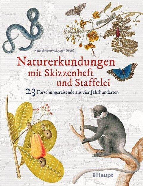 Naturerkundungen mit Skizzenheft und Staffelei -