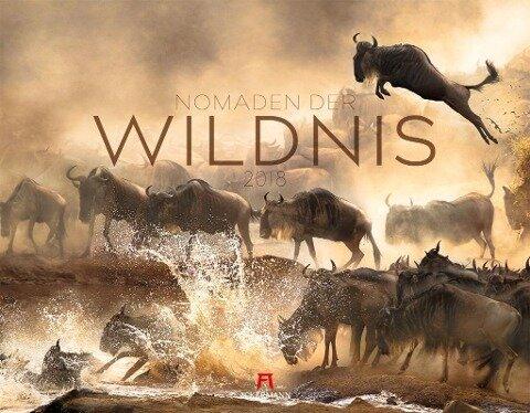 Nomaden der Wildnis 2018