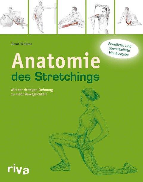 Anatomie des Stretchings - Brad Walker