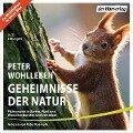Geheimnisse der Natur - Peter Wohlleben