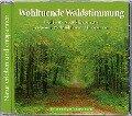 Naturgeräusche: Wohltuende Waldstimmung -