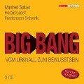 Big Bang: Vom Urknall zum Bewusstsein - Manfred Spitzer, Harald Lesch, Friedemann Schrenk