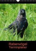 Rabenvögel Terminplaner (Wandkalender 2018 DIN A4 hoch) Dieser erfolgreiche Kalender wurde dieses Jahr mit gleichen Bildern und aktualisiertem Kalendarium wiederveröffentlicht. - K. A. Kattobello