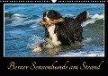 Berner Sennenhunde am Strand (Wandkalender 2018 DIN A3 quer) Dieser erfolgreiche Kalender wurde dieses Jahr mit gleichen Bildern und aktualisiertem Kalendarium wiederveröffentlicht. - Sigrid Starick