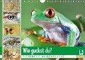 Wie guckst du? Tierische Augenblicke (Wandkalender 2019 DIN A4 quer) - K. A. Calvendo