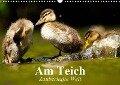 Am Teich. Zauberhafte Welt (Wandkalender 2019 DIN A3 quer) - Elisabeth Stanzer