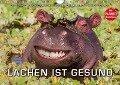 Emotionale Momente: Lachen ist gesund. (Wandkalender 2017 DIN A4 quer) - Ingo Gerlach