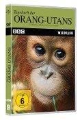 BBC Wildlife: Tagebuch der Orang-Utans 1 -