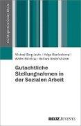 Gutachtliche Stellungnahmen in der Sozialen Arbeit - Michael Borg-Laufs, Helga Oberloskamp, Walter Röchling, Barbara Seidenstücker