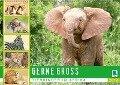Gernegroß: Tierkinder in Afrika (Wandkalender 2019 DIN A2 quer) - K. A. Calvendo