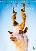 Tiere vom Bauernhof (Tischkalender 2018 DIN A5 hoch) Dieser erfolgreiche Kalender wurde dieses Jahr mit gleichen Bildern und aktualisiertem Kalendarium wiederveröffentlicht. - K. A. Calvendo