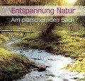 Entspannung Natur - Am plätschernden Bach - Karl-Heinz Dingler