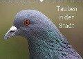 Tauben in der Stadt (Wandkalender 2018 DIN A3 quer) - k. A. kattobello