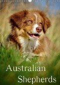 Australian Shepherds (Wandkalender 2017 DIN A3 hoch) - Nicole Noack