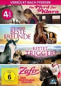 Verrückt nach Pferden - Die ultimative Pferde-Box -