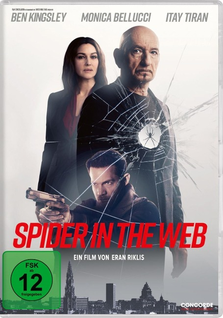 Spider in the Web -