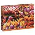 Holländische Tulpen - 1000 Teile Puzzle -