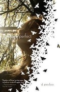 Picture Perfect - D. Anne Love