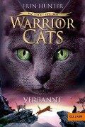 Warrior Cats 03. 3. Die Macht der drei. Verbannt - Erin Hunter
