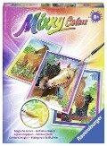 Pferdefreunde Mixxy Colors Midi -