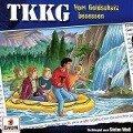 TKKG 201. Vom Goldschatz besessen - TKKG